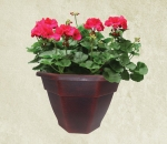 10-in-geranium-red-outdoor-wholesale