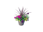 12-in-bejewled-deco-planter